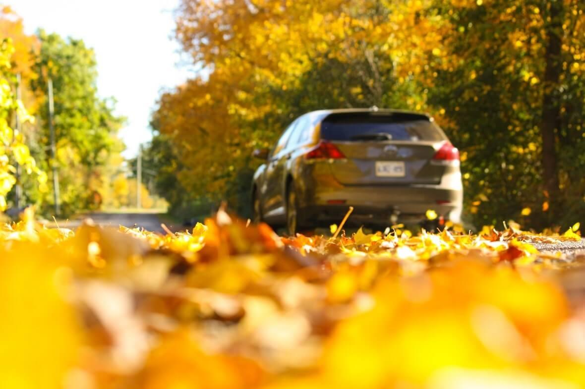 A car driving in autumn